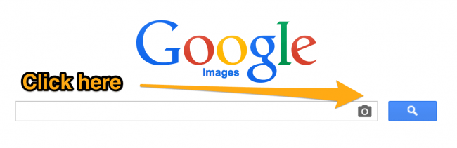 use-google-images-search