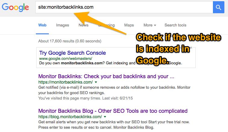 check-google-index-status