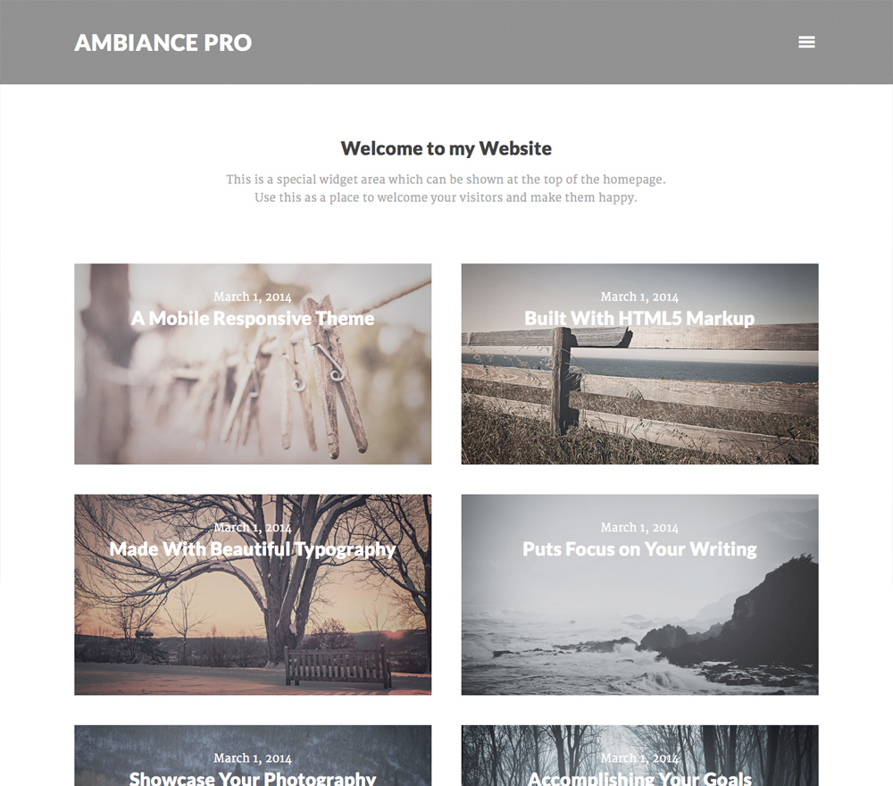 genesis-wordpress-themes-4