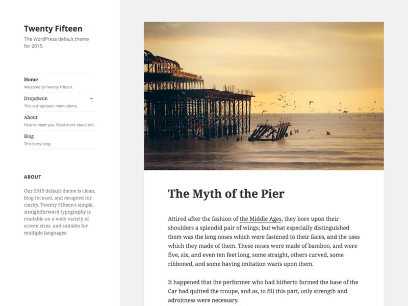 most-popular-wordpress-themes-3