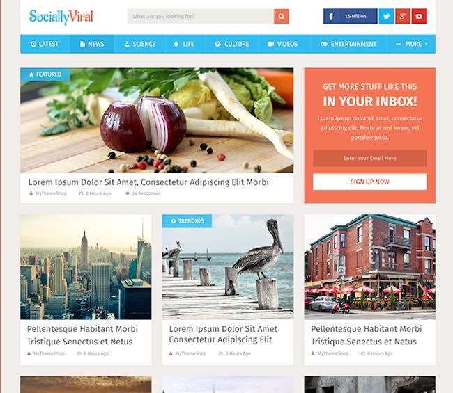 most-popular-wordpress-themes-sociallyviral