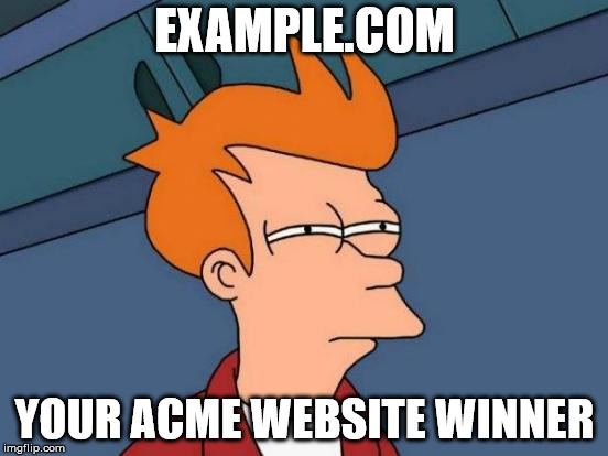 Example.com - Your ACME Website Winner